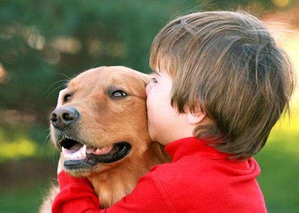 Какие черты объединяют людей и животных