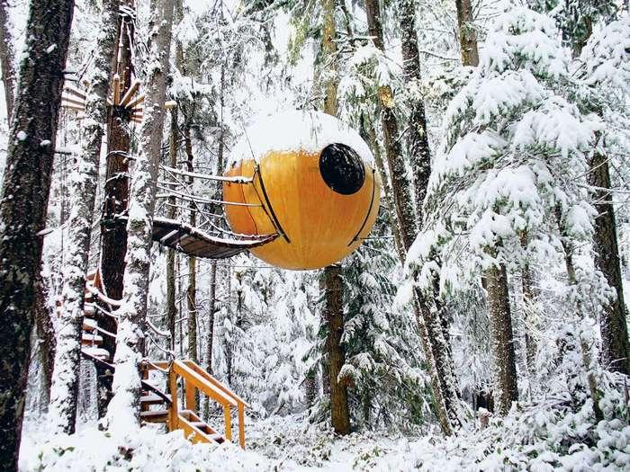 Оригинальный отель в лесу на острове Ванкувер