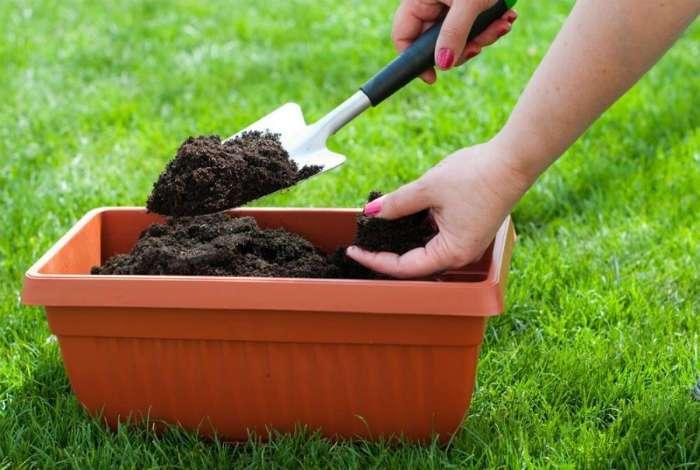 Cоветы для дачников и садоводов