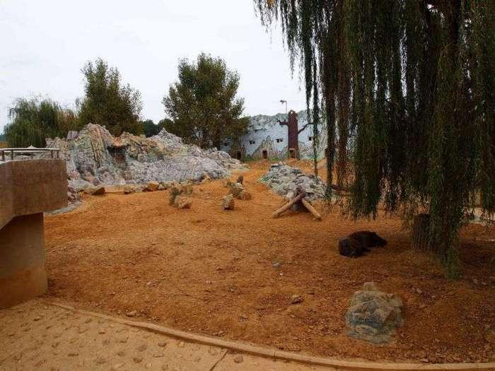 Прогулка по главному зоопарку Северной Кореи