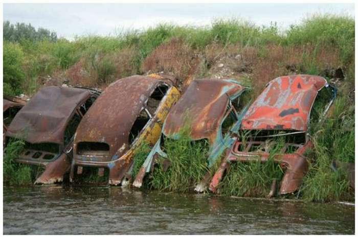 Заброшенные автомобили - кладбища ушедшей красоты (20 фото)