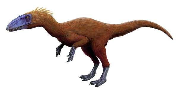От бега к полёту. Теория происхождения птиц от динозавров-тероподов