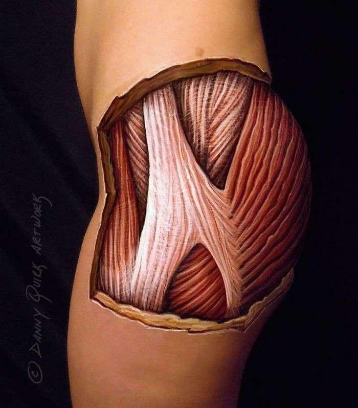 Художник рисует анатомию человека