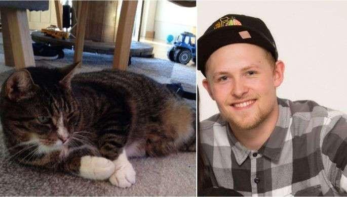 В Швеции кот воссоединился с хозяином спустя 9 лет