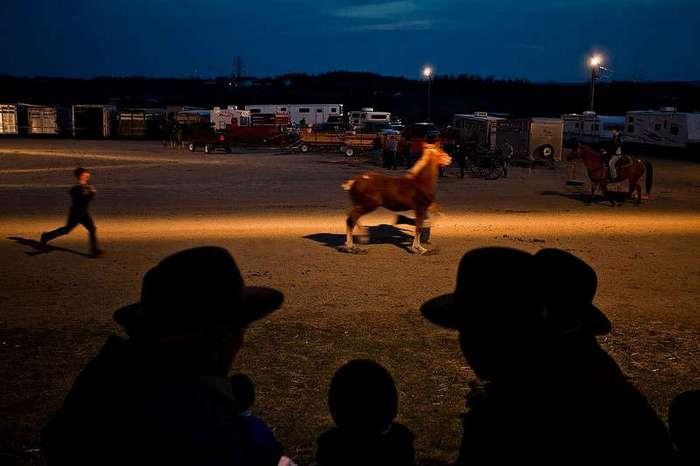 Современная жизнь — это мусор: фотограф побывал в общине Амишей