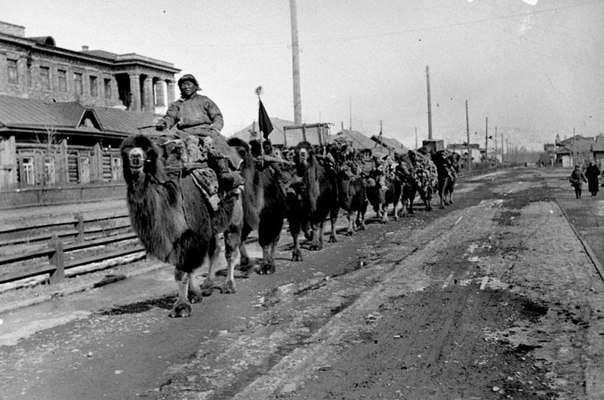 Как Восток помогал СССР в годы ВОВ