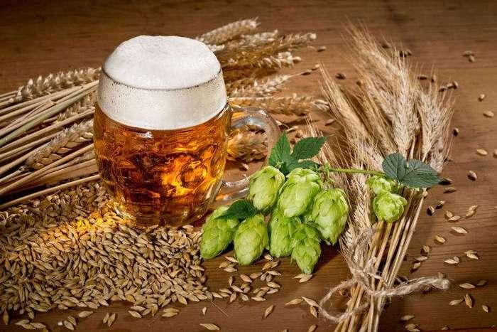 Особенности немецкого пития: сначала пиво, потом первач
