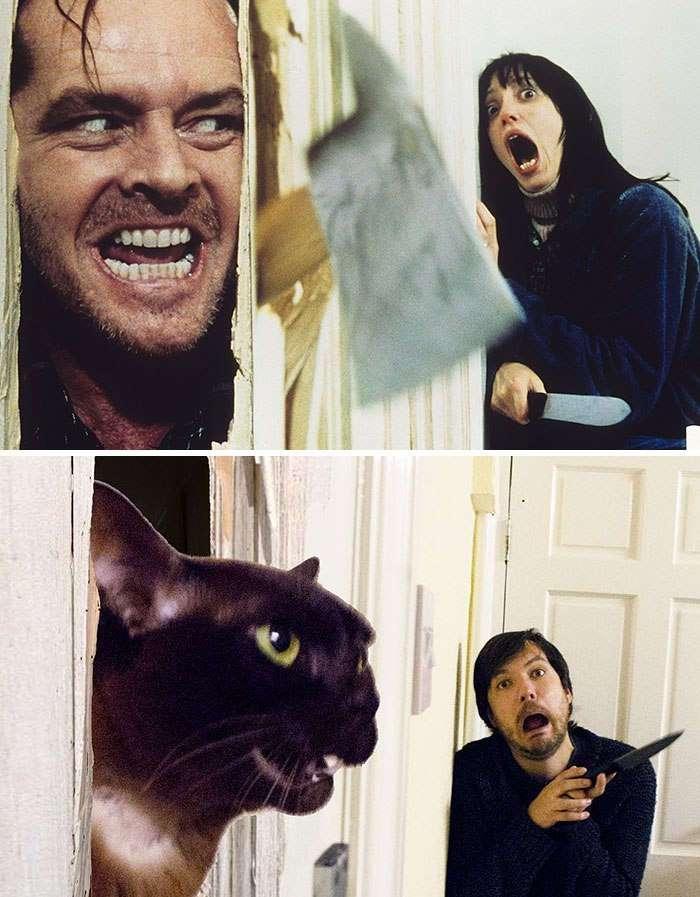 Парень вместе со своим котом повторяет сцены из известных фильмов.