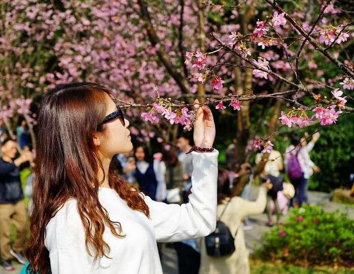 Весенние фото из японского Инстаграм