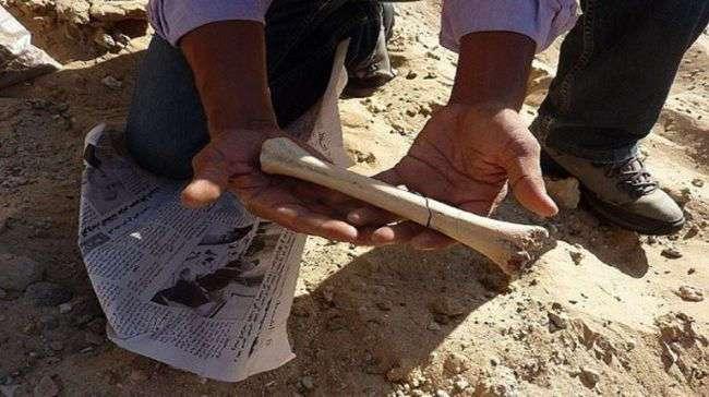 Археологи обнаружили в Тунисе новые доказательства ранней миграции человека из Африки