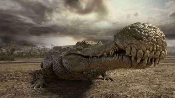 15 самых гигантских животных, когда-либо населявших нашу планету