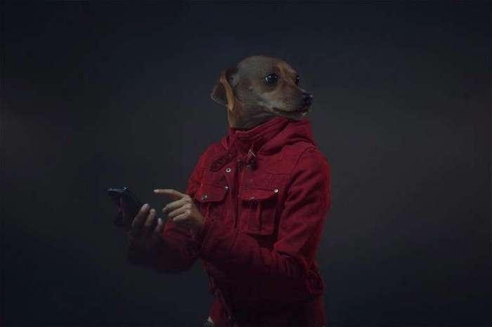 Что получится, если собак и их владельцев объединить в одно целое