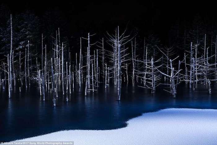 Невероятные фотографии нашей планеты!
