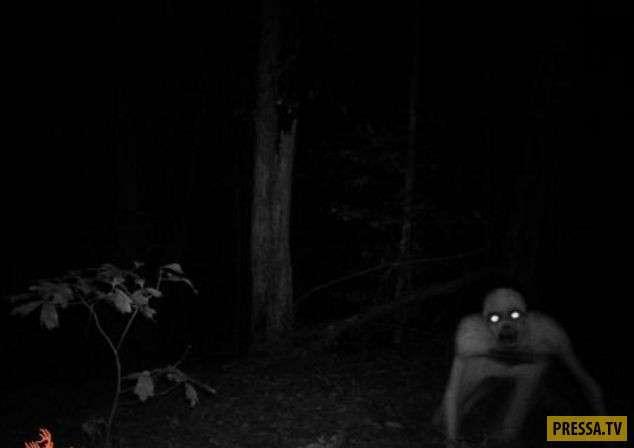 ТОП-10 странных и жутких существ, и кем они на самом деле оказались (20 фото+2 видео)