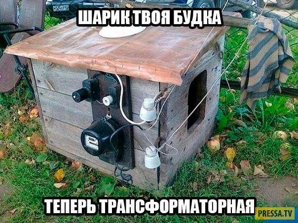 Жизненный юмор в картинках (46 фото)