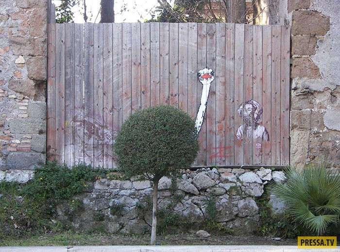 Когда искусство идеально сочетается с природой (64 фото)