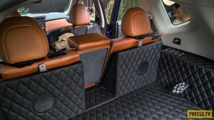 Багажник для собак от компании Nissan (11 фото + видео)