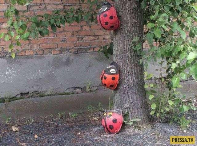 Забавные фотографии весенних неурядиц с родных просторов (41 фото)