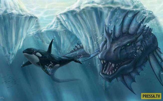 ТОП-15 странных историй и загадок океана (14 фото+1 видео)