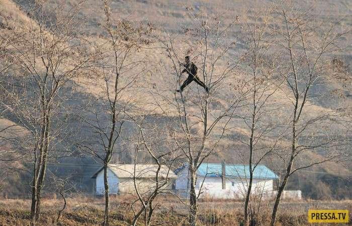 Фотографии границы Северной Кореи (22 фото)