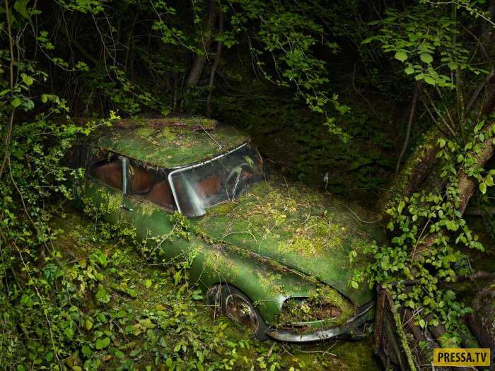 Последняя парковка (13 фото)