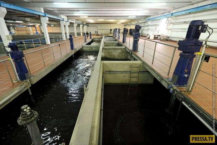 Как очищают воду из Москвы-реки, чтобы она стала пригодной к употреблению (13 фото)