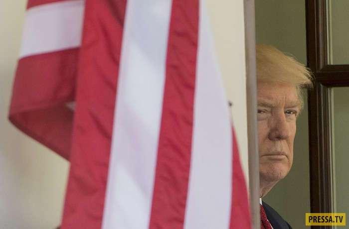 Смешные и позитивные фотографии первых ста дней Трампа (28 фото)
