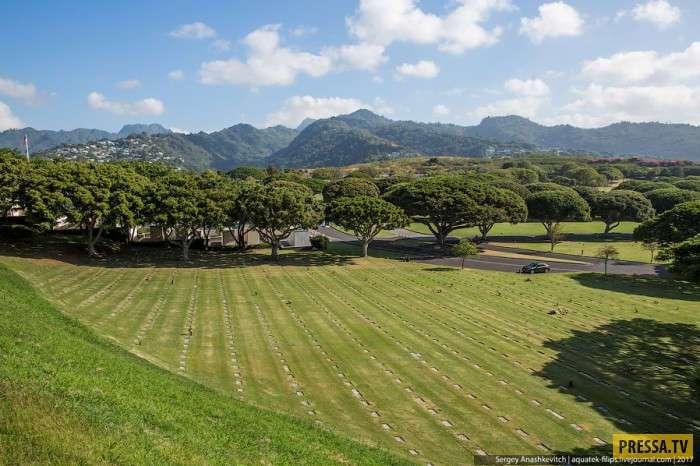 Первое, что бросается в глаза на Гавайях (10 фото)