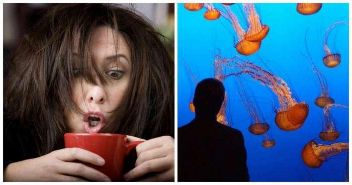 15 любопытных фактов, которые перевернут ваш мир