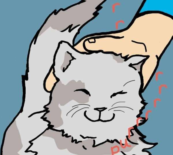 Положительное влияние кошки на здоровье человека