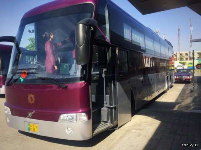 Рейсовые автобусы VIP-класса в Пакистане (4 фото)