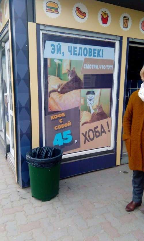 Смешные вывески и реклама (21 фото)