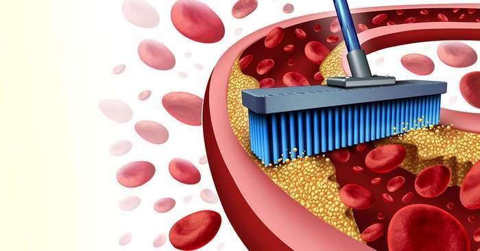 9 продуктов, которые естественным способом очищают артерии