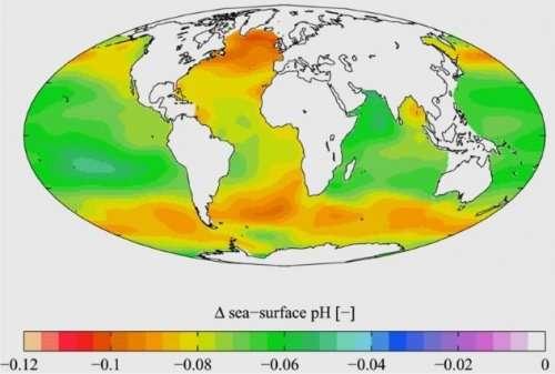 Топ-10: удивительные факты про морские глубины, о которых не все знают