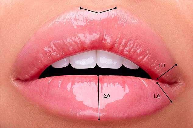 Как выглядят идеальные женские губы?