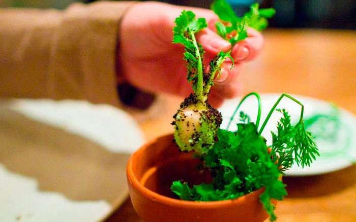 Шедевральные блюда молекулярной кухни