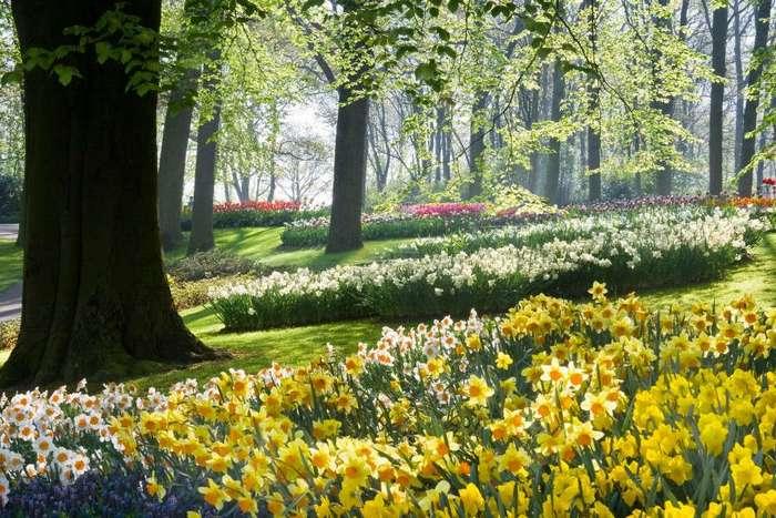 Где стоит побывать весной