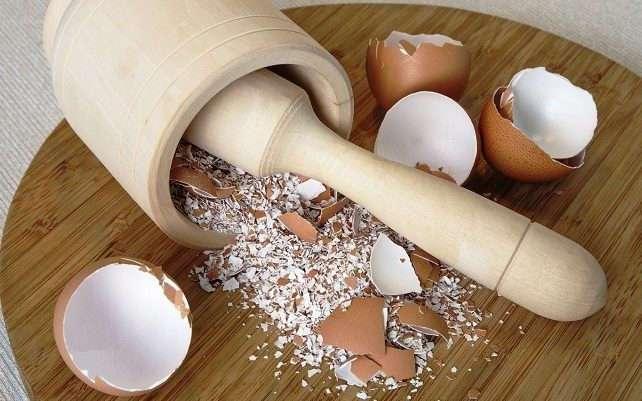 Польза яичной скорлупы в быту