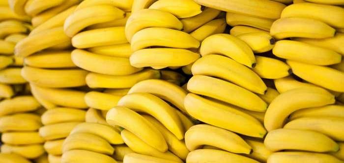 Весь процесс выращивания бананов на видео