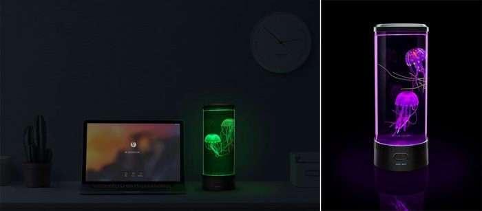 Электроаквариум с медузами как средство отдохнуть от суеты