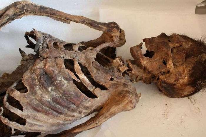 Монгольская мумия в стильных кроссовках