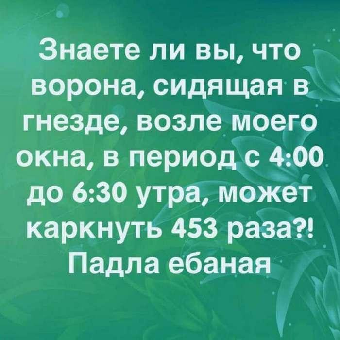 Улыбнись: &171;Учёные доказали, что 50 грамм перед едой&8230;&187; (73 фото)