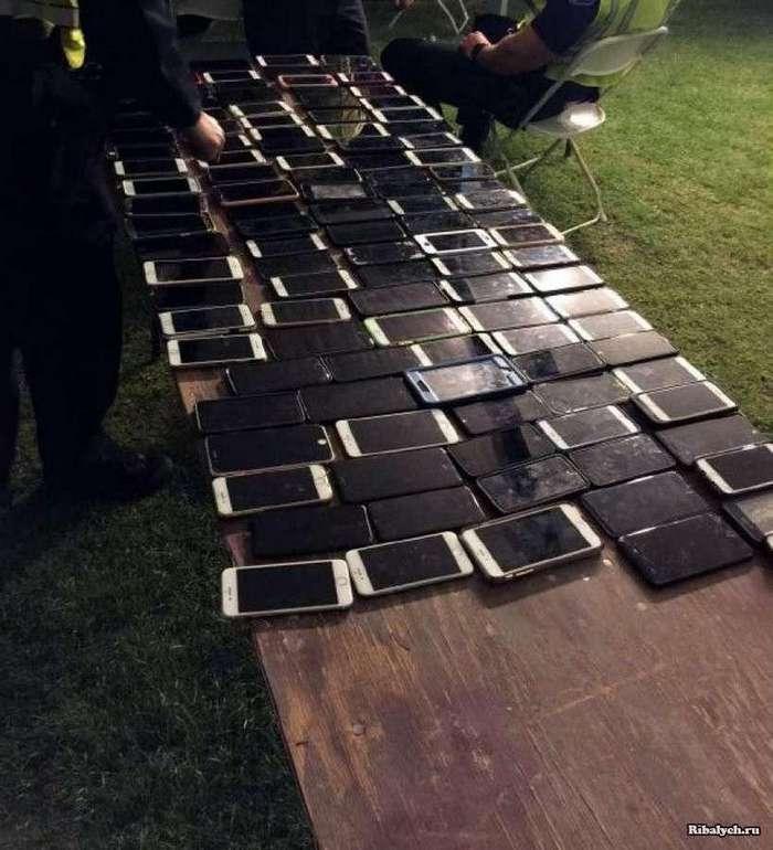 На фестивале Coachella вор украл за день 100 смартфонов (3 фото)
