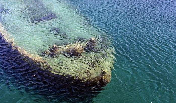 Удивительные морские истории и факты (25 фото)