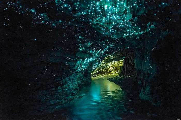 Пещеры Вайтомо (Waitomo)