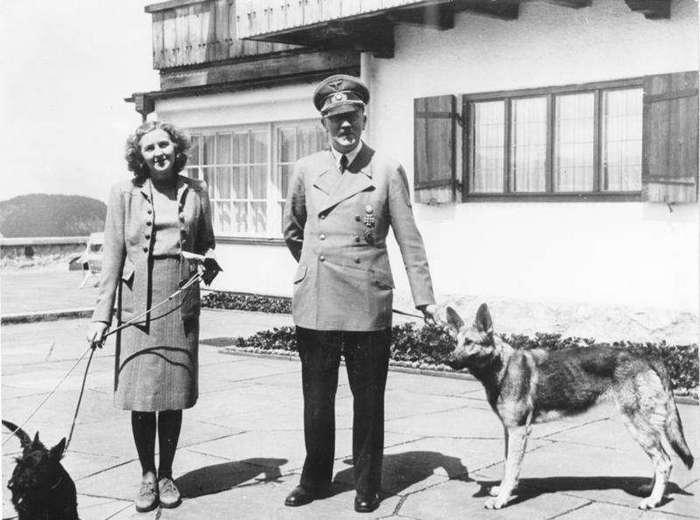 Нацисты пытались научить собак говорить