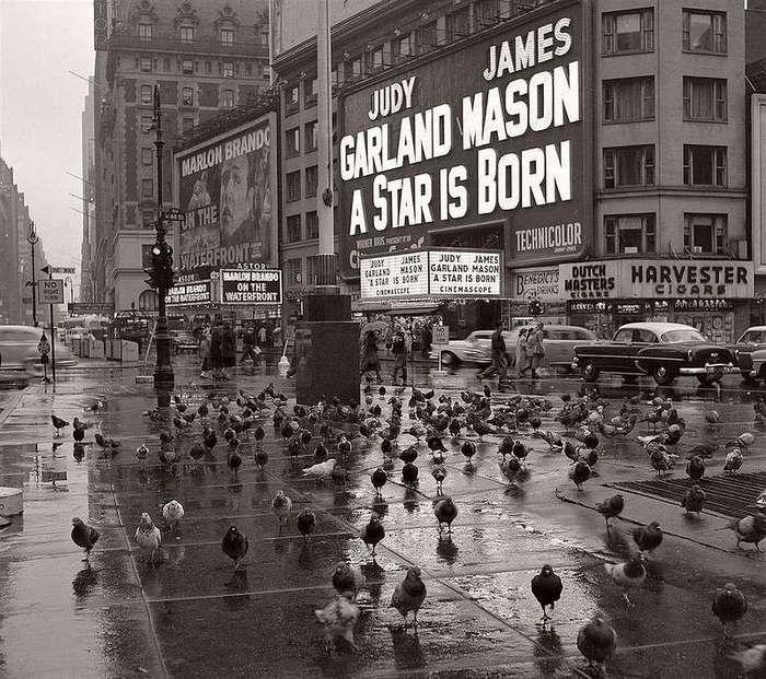 Машина Времени. Нью-Йорк, 1954
