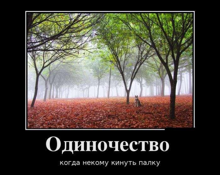 Гоним скуку и улыбаемся ! )