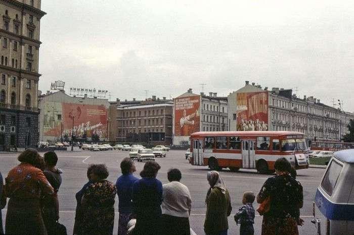 Апогей -застоя- - 1981 год