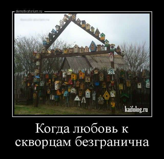 Смешные демотиваторы о России